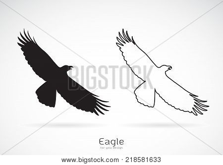 Vector of the eagle is spreading its wings. on white background Wild Animals. Bird.