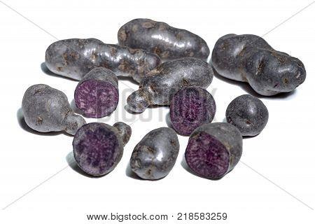Blue violet Truffle potatoes Vitelotte on white background