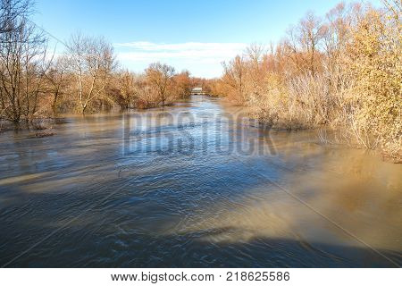 The river after the downpours came out of the banks. Flooding of river bank, trees after flood
