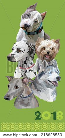 Vertical postcard with dogs of different breeds (American Staffordshire Terrier; Italian Greyhound; Dalmatian siberian huskyYorkshire Terrier) on green background. 2018 year of dog.