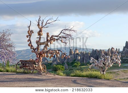 Tree Of Wishes in Goreme open air museum Cappadocia Central Anatolia Turkey