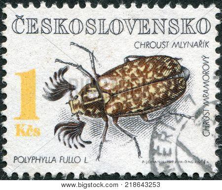 CZECHOSLOVAKIA - CIRCA 1992: A stamp printed in the Czechoslovakia shows a beetle Polyphylla fullo circa 1992
