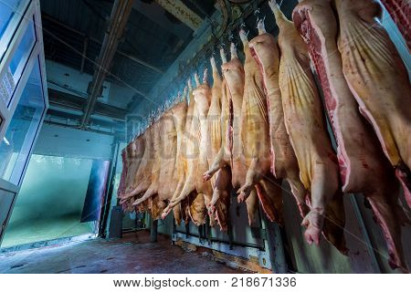 Pork production at a factory. Chopped pig.