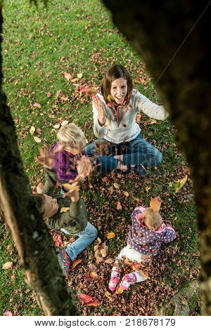 Excited enthusiastic young mother playing with her three small children on the grass amongst autumn leaves viewed from overhead.