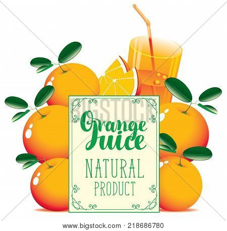 Vector banner for fresh juice with oranges glass of juice orange slice and signboard with inscription Orange juice