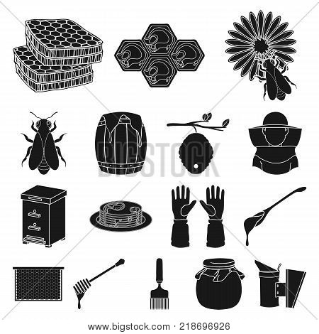 Apiary and beekeeping black icons in set collection for design.Equipment and production of honey vector symbol stock  illustration.