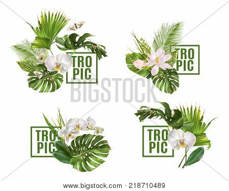 Vector botanical horizontal banners set with tropical leaves orchid flowers on white. Design for cosmetics, spa, health care products, travel company. Can be used as summer background
