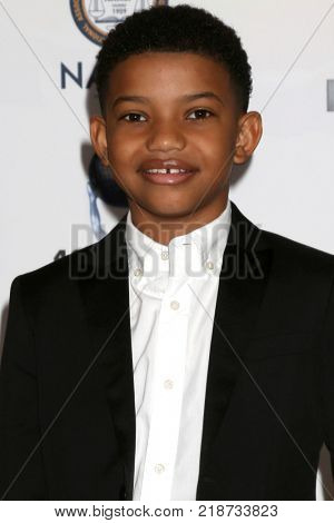 LOS ANGELES - DEC 16:  Lonnie Chavis at the 49th NAACP Image Awards Nominees' Luncheon at Beverly Hilton Hotel on December 16, 2017 in Beverly Hills, CA