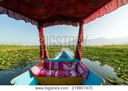 Beautiful view from the traditional shikara boat on Dal lake, Srinagar, India.