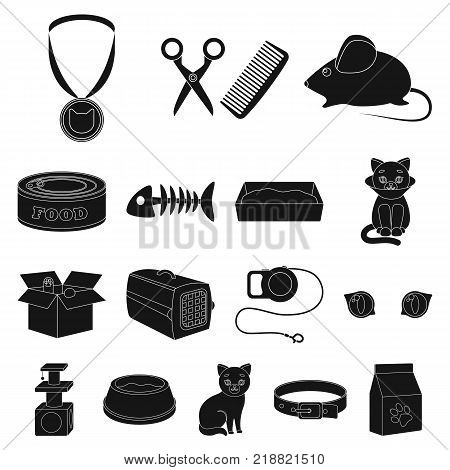 An animal cat black icons in set collection for design. Caring for a cat vector symbol stock  illustration.