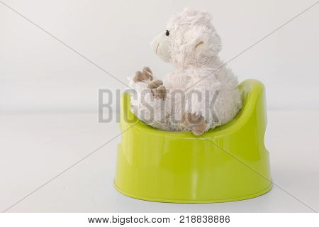 Toy lamb sits on the pot side view white background