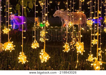 Multi colors LED decorated in public park in cerebration of Christmas and New Year festival