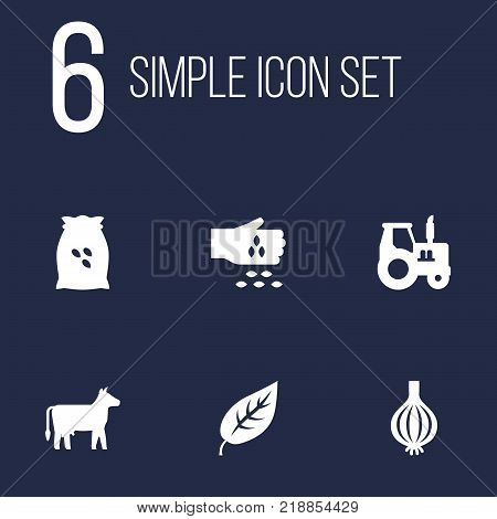 Collection Of Farm Vehicle, Foliage, Kine And Other Elements.  Set Of 6 Harvest Icons Set.