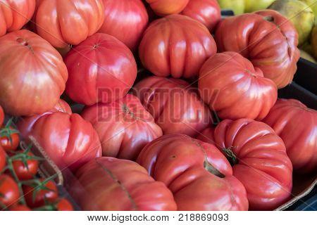 Ox-heart or Bull's Heart  tomatoes at organic farmers market