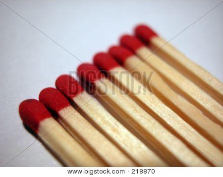 8 Macro Matches
