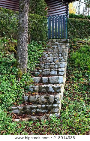Stone steps covered with moss and brown autumn leaves leading towards wood picket yard fence doors surrounded with hedge and high uncut grass