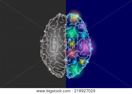 Creative and logic part brain. Analytics constructive artistic imagination hemisphere side mind function. Low poly polygonal point line bright blue gray abstract geometric vector illustration art