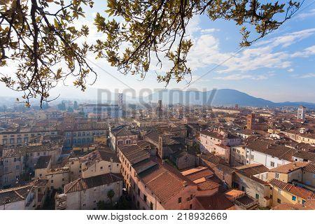 Lucca from Guinigi Tower. Italian landmark. Aerial view of Lucca.