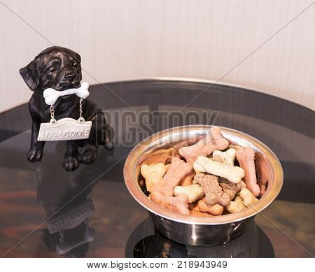 A bowl of dog buscuits are left out on a table for hotel guests to give to their dog/