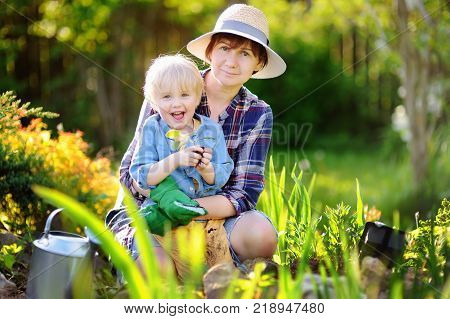 Beautiful woman and her cute son planting seedlings in bed in the domestic garden at summer day. Garden tools gloves and watering can outdoors. Gardening activity with little kid and family