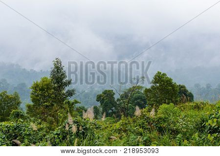 Beautiful view of the mountains area in local North Vietnam. Cloudy, nasty, rainy season