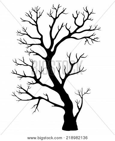 black silhouette of a branchy tree on a white background
