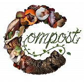 Compost concept and composting symbol life cycle and an organic recycling system as a pile of rotting food scraps with a sapling growing shaped as text in a 3D illustration style. poster