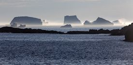 steaming and melting icebergs in late afternoon sun; Fogo Island, Newfoundland, Canada