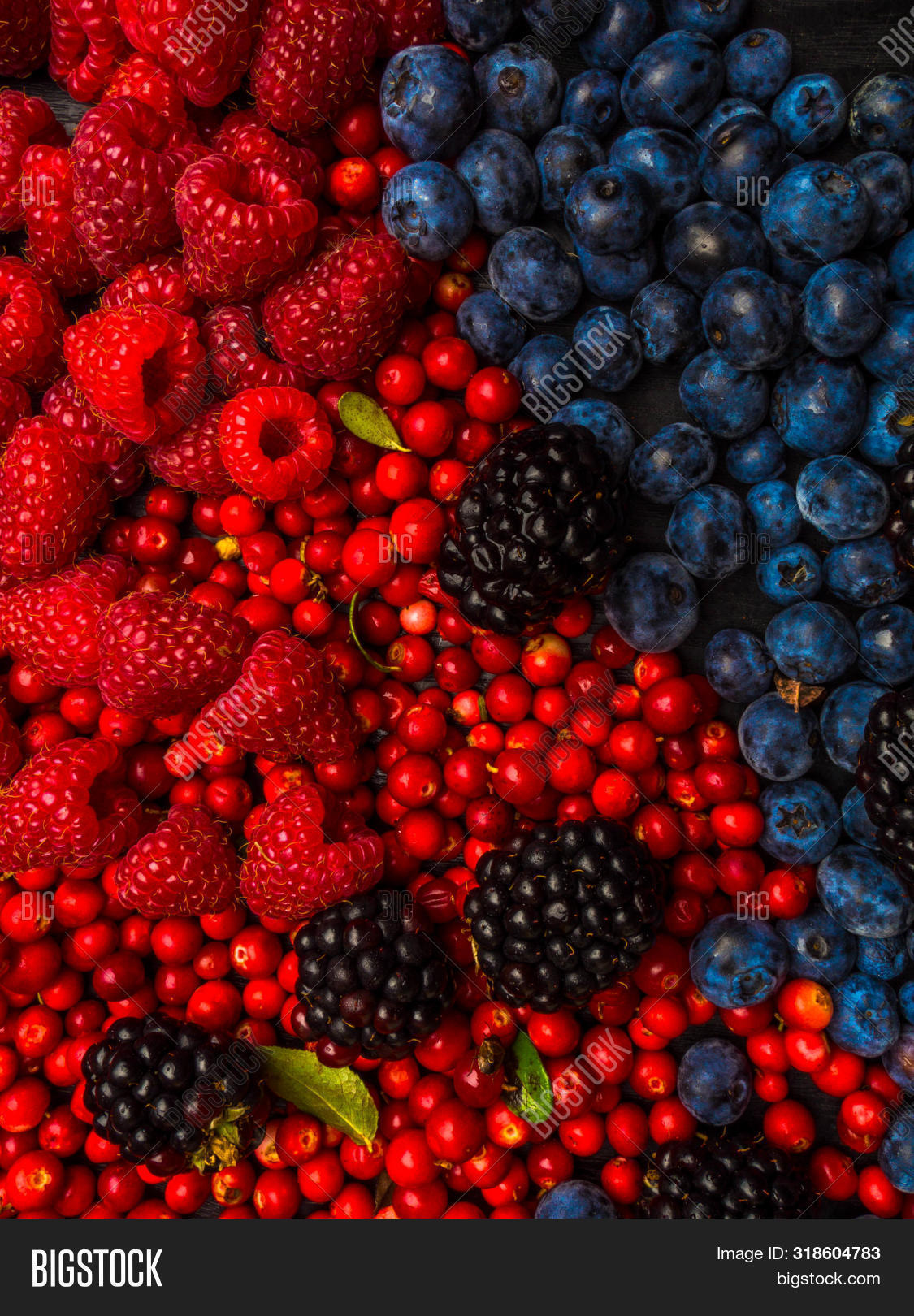 Super Antioxidants Image Photo Free Trial Bigstock
