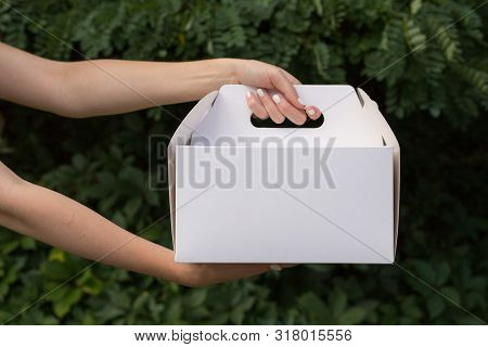 Receiving Package Of Baking Mock Up. Close Up Female Holds In Hands Cake Dessert In Unmarked Clear E