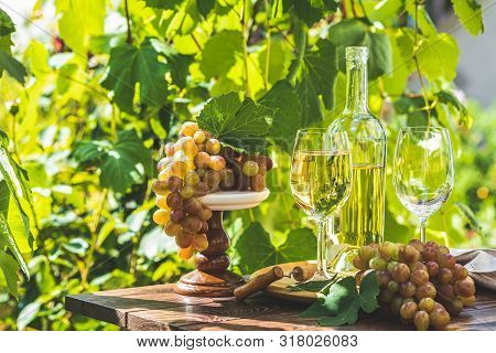 Grape And White Wine. Green Grape And White Wine In Vineyard. Sunny Garden With Vineyard Background,