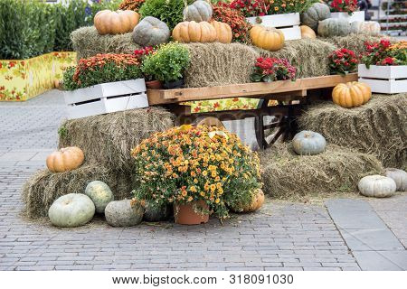 Some Pumpkins With Hay And Flowers On Old Cart For Fall Decoration At Market Place.