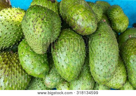 Annona Muricata Soursop Fruit For Sale In Philippines Market