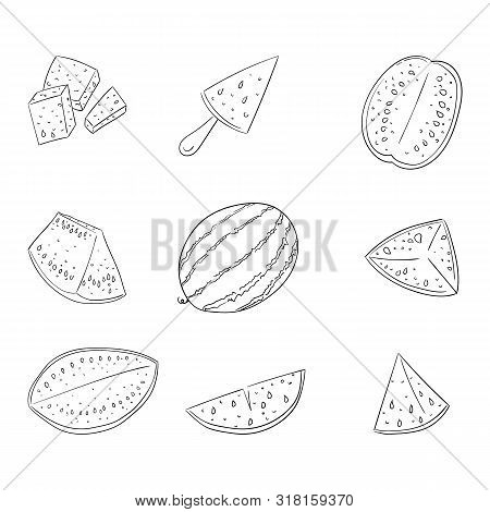 Watermelon Whole And Sliced Outline Illustrations Set