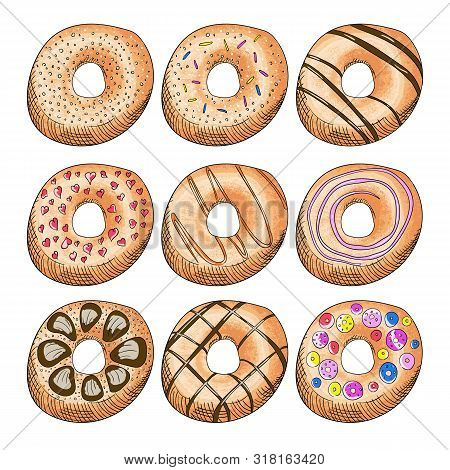Donuts Decorated With Icing Color Illustrations Set