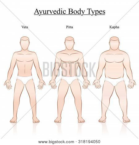 Male Body Constitution Types - Ayurvedic Typology - Vata, Pitta, Kapha. Isolated Outline Vector Illu