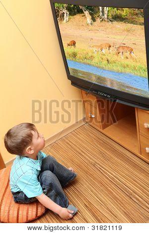 Kleine Junge Kino im Fernsehen beobachten. TV-Bildschirm - Foto des Autors