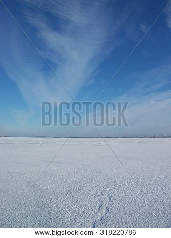 Footprints In The Snow Going Away. Walk In Baikal. Bright Blue Sky With Feathery Clouds On A Sunny W