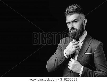 Bow Tie. Bearded Man In Dark Grey Suit. Man In Classic Suit, Shirt And Tie. Rich Man Model. Luxury C