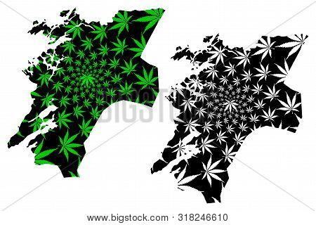 Nord-trondelag (administrative Divisions Of Norway, Kingdom Of Norway) Map Is Designed Cannabis Leaf