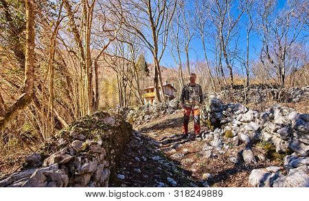Mature Hiker Walking On Trail.