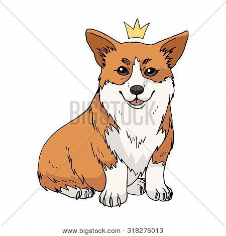 Cute Cartoon Pembroke Welsh Corgi With A Crown Isolated On White Background. Vector Dog Illustration
