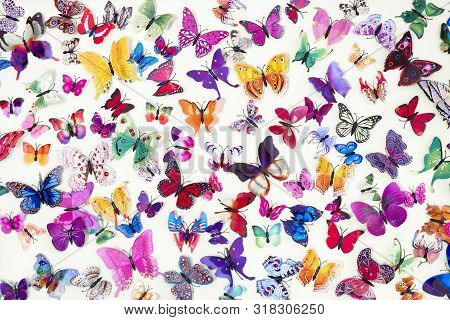 Pattern Of Colored Butterflies Isolated On White Background. Decorative Butterflies Background. Patt