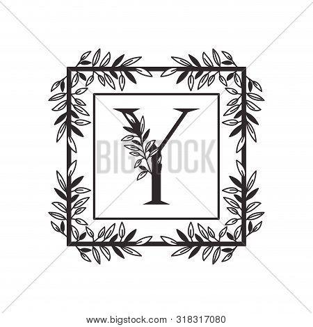 Letter Y Of The Alphabet With Vintage Style Frame Vector Illustration Design