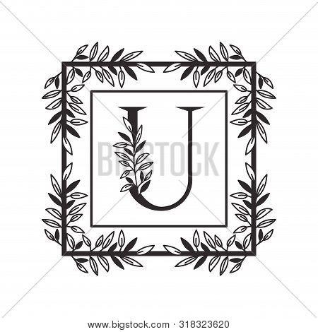 Letter U Of The Alphabet With Vintage Style Frame Vector Illustration Design