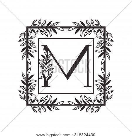 Letter M Of The Alphabet With Vintage Style Frame Vector Illustration Design