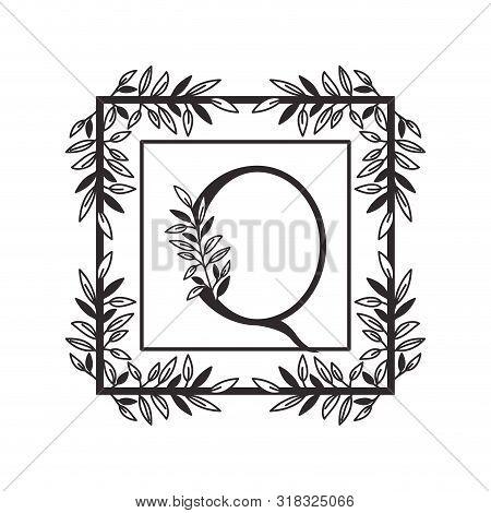 Letter Q Of The Alphabet With Vintage Style Frame Vector Illustration Design