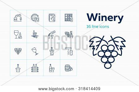 Winery Icons. Set Of Line Icons On White Background. Wine Bottle, Brewery, Barrel. Alcoholic Drinks