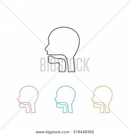 Oral Cavity, Pharynx And Esophagus Glyph Icon Set. Upper Section Of Alimentary Canal. Silhouette Lin