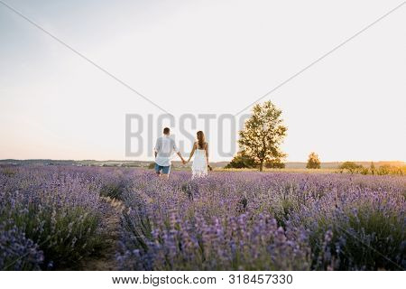Couple In Purple Lavender Field Romantic Sunset. Long Shot Of Young Caucasian People Walking Togethe
